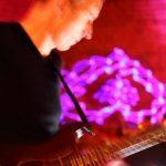 Profilbild von a-live music project (a.m.p.)